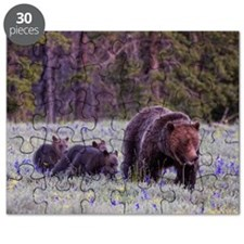 Grizzly Bear 399 Puzzle