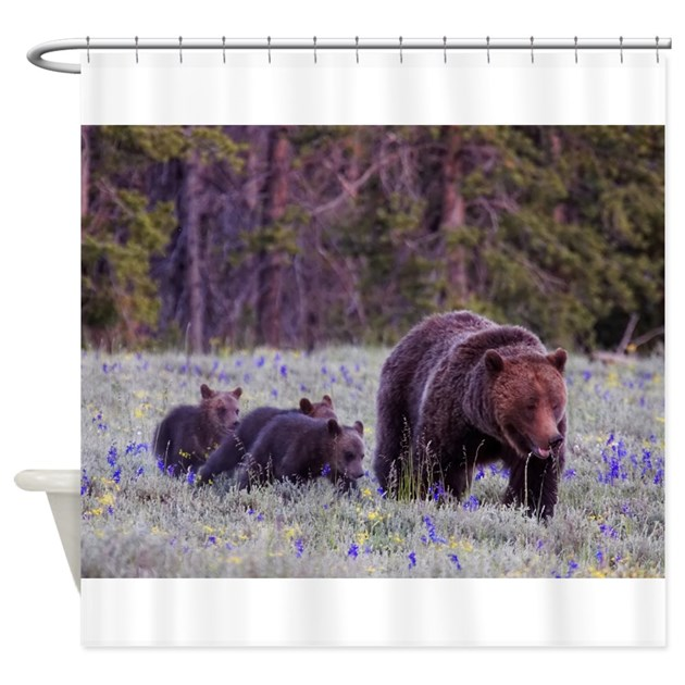 Grizzly Bear 399 Shower Curtain By Bearsden