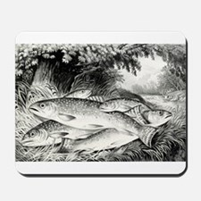 American brook trout - 1872 Mousepad