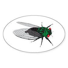 Cicada Decal