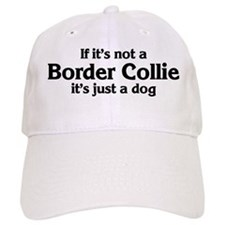 Border Collie: If it's not Baseball Cap