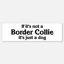 Border Collie: If it's not Bumper Bumper Bumper Sticker