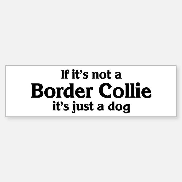 Border Collie: If it's not Bumper Bumper Bumper Sticker