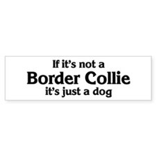 Border Collie: If it's not Bumper Bumper Sticker