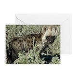 Hyena Greeting Cards