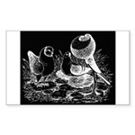 Etched Pigeon Trio Rectangle Sticker