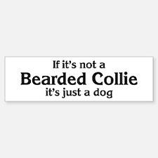 Bearded Collie: If it's not Bumper Bumper Bumper Sticker