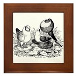 Pigeon Trio Framed Tile