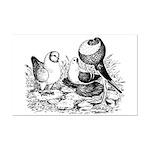 Pigeon Trio Mini Poster Print