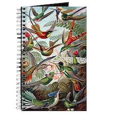 Vintage Hummingbird Journal