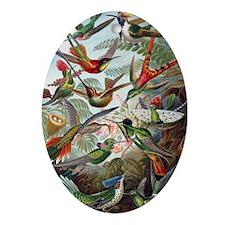 Vintage Hummingbird Oval Ornament