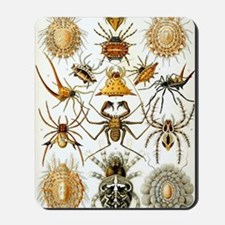 Vintage Spiders Mousepad