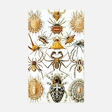 Vintage Spiders Decal