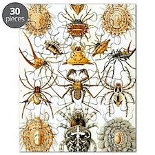 Vintage Spiders Puzzle