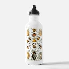 Vintage Spiders Water Bottle