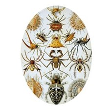 Vintage Spiders Oval Ornament