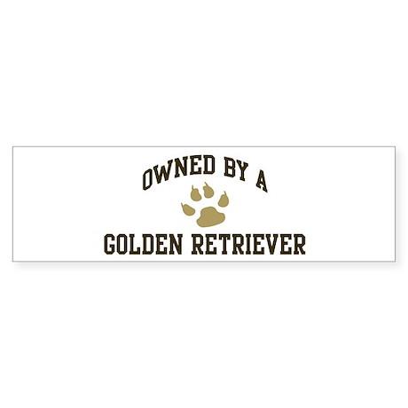 Golden Retriever: Owned Bumper Sticker