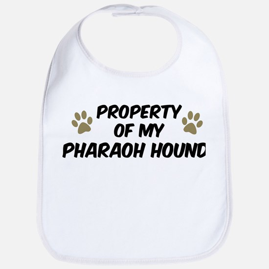 Pharaoh Hound: Property of Bib