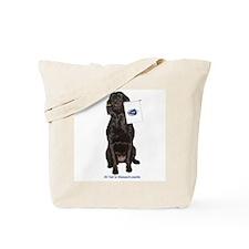 massachussetts Tote Bag