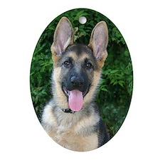 German Shepherd Oval Ornament
