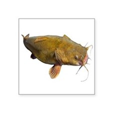 Big Flathead Catfish Sticker