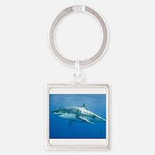 Great White Shark Square Keychain