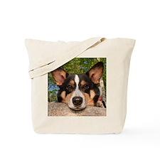 Show Me Sad Tote Bag
