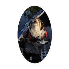 Full Stop! Oval Car Magnet