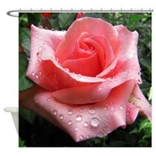 Pink Rose with Dew Shower Curtain