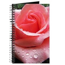Pink Rose with Dew Journal