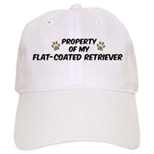 Flat-Coated Retriever: Proper Baseball Cap