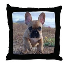 Ava Rouge Throw Pillow