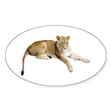 Resting lioness Decal