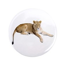 """Resting lioness 3.5"""" Button"""