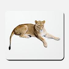 Resting lioness Mousepad