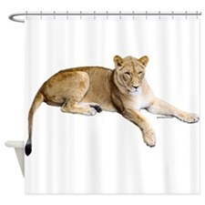 Resting lioness Shower Curtain