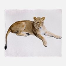 Resting lioness Throw Blanket