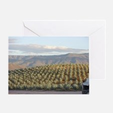 agave hill Greeting Card