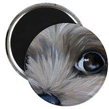 Peeper Magnet