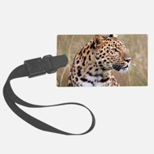 male amur leopard Luggage Tag