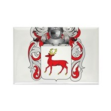McCarthy Coat of Arms - Family Crest Rectangle Mag