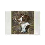 Brittany Spaniel Rectangle Magnet (100 pack)