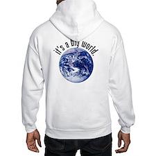 It's a Big World/Got GIS? Hoodie