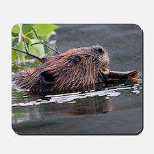 beaver Mousepad