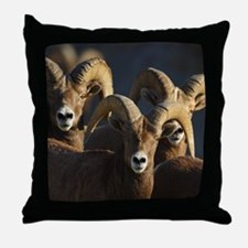 rams Throw Pillow