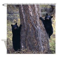 black bear cubs Shower Curtain
