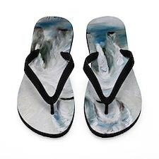 Two's Company Flip Flops