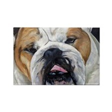 Daisy Bulldog Rectangle Magnet