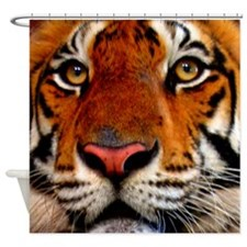 Closeup of Tiger Face Shower Curtain