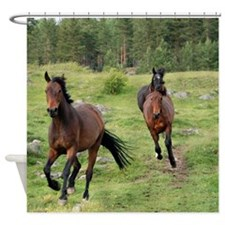 Running Wild Horses Shower Curtain